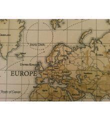Tan Fryett's Maps 100% Cotton Fabric